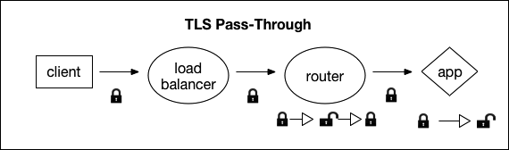 Securing Traffic into Cloud Foundry | Cloud Foundry Docs